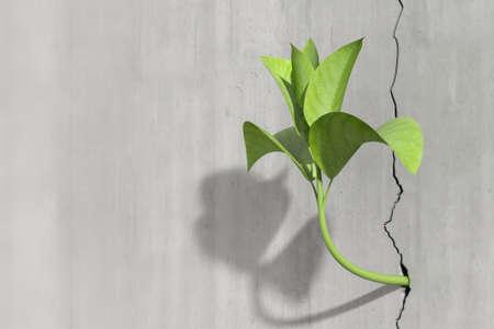 La supervivencia y el concepto de crecimiento de una pequeña 3d render de una planta en un muro de hormigón