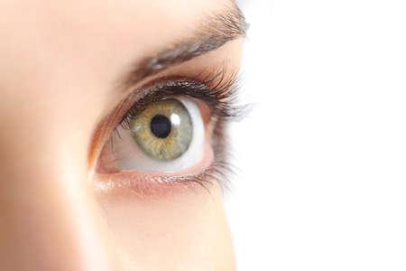 白い背景で隔離美しい女性緑色の目のクローズ アップ 写真素材