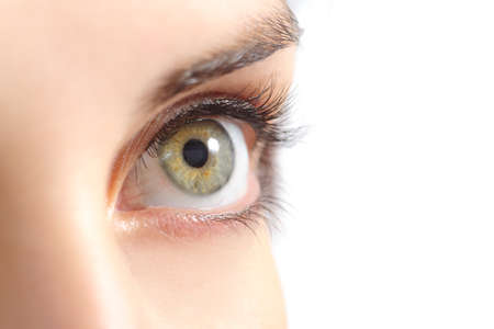 ocular: Close up of a beautiful woman green eye isolated on a white background