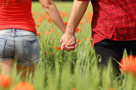 Back view of a romantic couple holding hands in a field with red flowers Stockfoto