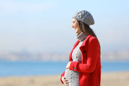 Side view portrait of a happy pregnant woman taking a walk on the beach in a sunny winter day 免版税图像