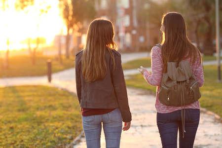 Volver la vista de dos amigos caminando juntos en un parque en la salida del sol con una luz cálida en el fondo