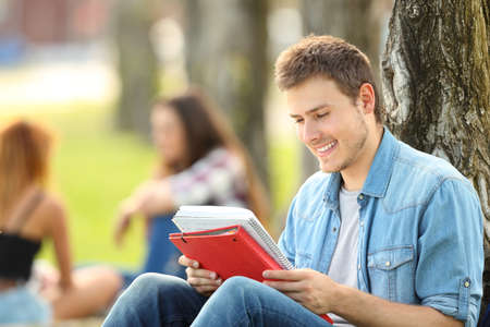 Student studying memorizing notes outdoors sitting on the grass in a park Stock Photo
