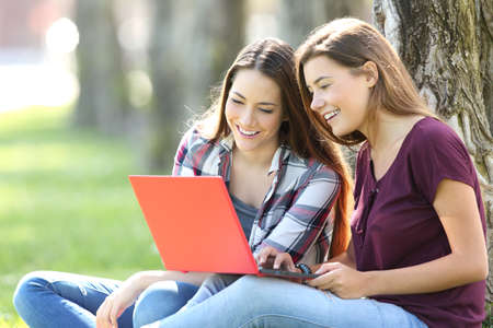 software portability: Two happy friends searching media content online in a red laptop sitting on the grass in a park Stock Photo