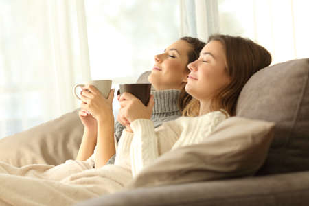 Two relaxed roommates in winter sitting on a sofa in the living room of a house interior Stockfoto