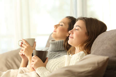 Side view portrait of two roommates relaxing in winter sitting on a sofa in the living room in a house interior Banque d'images