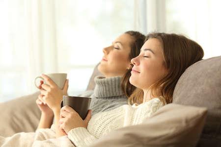 Retrato de vista lateral de dos compañeros de piso relajante en invierno sentado en un sofá en la sala de estar en el interior de una casa Foto de archivo - 91215609