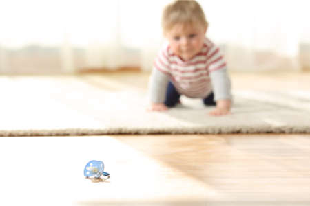 Curious baby crawling towards a dirty pacifier on the floor at home Stock Photo
