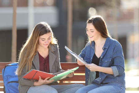 Two happy students studying reading notes sitting on a bench in a park Banco de Imagens