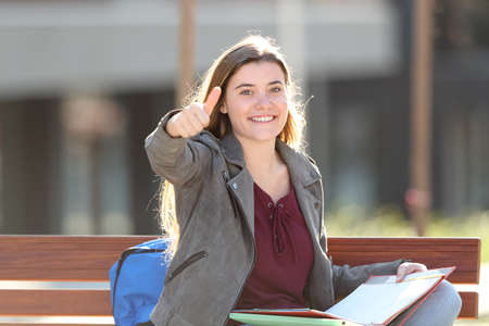 Happy student gesturing thumb up looking at camera sitting on a bench in a park