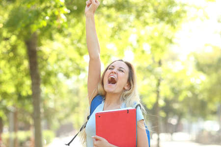 Excited student is celebrating success raising arm in a park Stock fotó