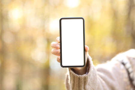 Close up of woman hand showing blank smart phone screen in autumn in a park