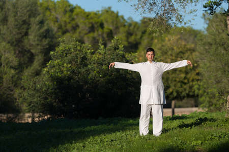 soul searching: caucasian man doing Tai Chi in the park