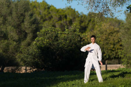 taichi: man practicing Tai-Chi in the park, selective focus