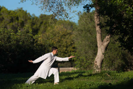 soul searching: young caucasian man practicing Tai-Chi outdoors in the park,selective focus