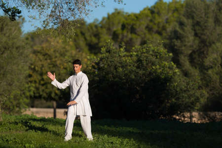 soul searching: young caucasian man practicing Tai-Chi in the park, selective focus