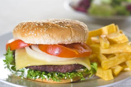 juicy hamburger meat lettuce tomato and onion mayonnaise Stock Photo - 3792325