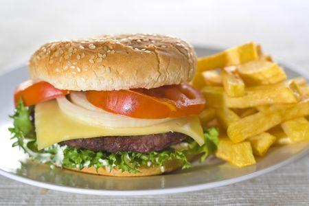 juicy hamburger meat lettuce tomato and onion mayonnaise Stock Photo - 3792322