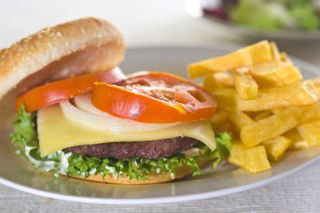 juicy hamburger meat lettuce tomato and onion mayonnaise photo