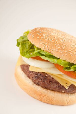 Fresh homemade Beef tomato cheese onion burger isolated Stock Photo - 5627897