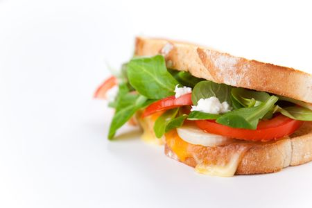 tasty lamb tomato onion and cheese sandwich photo