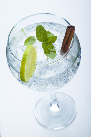 gin: lemon and cinnamon gin tonic isolated over white