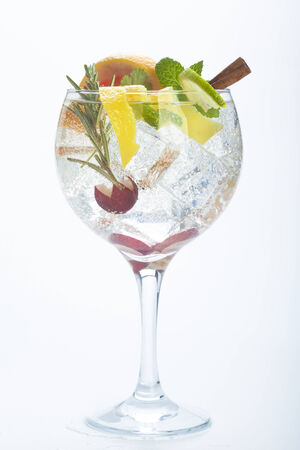gin: salad fruit gin tonic isolated over white