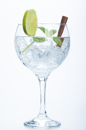 lemon and cinnamon gin tonic isolated over white