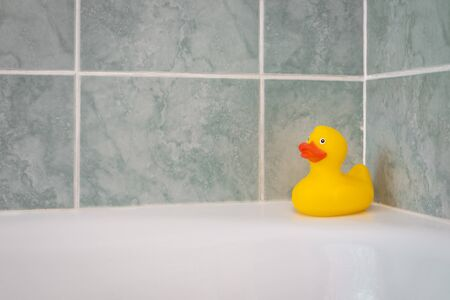 Yellow rubber duck in the bathtub