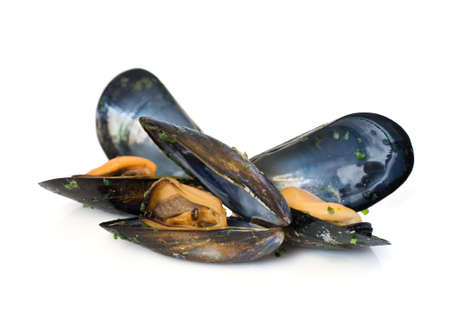 mussel: three mussels boiled with garlic isolated on white background