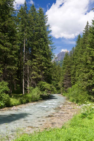 summer view of Avisio stream in Val di Fassa, italian dolomites Stock Photo - 5691291