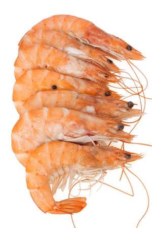 group of fresh shrimps isolated on white background Stock Photo - 6160675