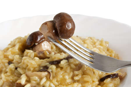 plate of risotto with mushrooms isolated