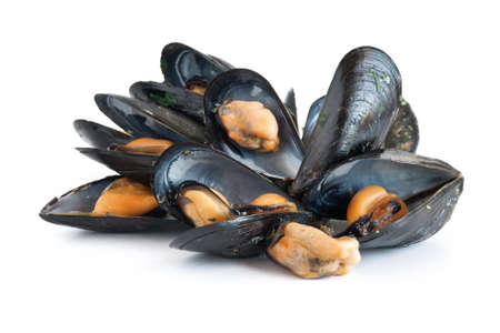 group of mussels isolated on white background Stock Photo