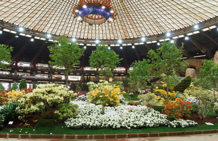 horticultural: 22 april 2011, Genova, Italy: Euroflora, the most important italian horticultural show held every 5 years  in Genoa.
