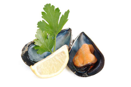 mussle: boiled mussle with lemon and parsley over white Stock Photo