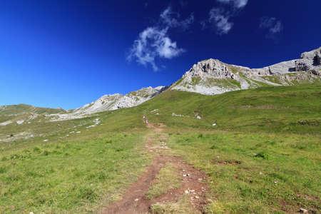 summer landscape of Italian Dolomites in San Pellegrino pass on a bright sunny day Stock Photo - 12340434