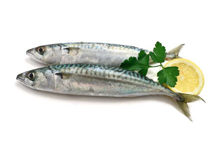 two mackerel fish with lemon and parsley over white  Stock Photo - 12680897