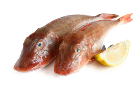 two fresh tub gurnard with sliced lemon Stock Photo - 16441890