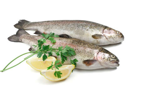two rainbow trouts with lemon and parsley over white  photo