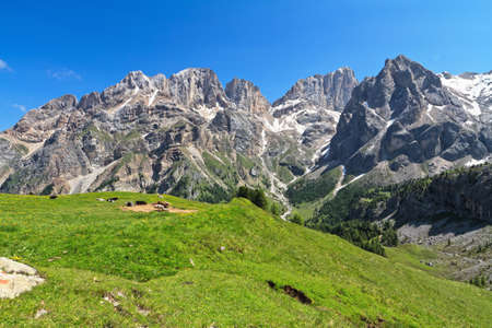 dolomites: summer view of Marmolada and Vernel mount from Contrin valley, Trentino, Italy