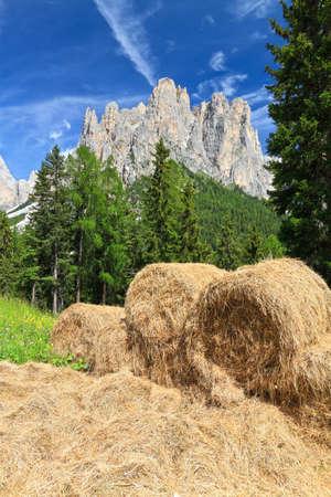 vajolet: alpine pasture with bales of hay beneath Catinaccio mont, Trentino, Italy