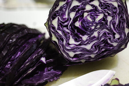 welfare plant: red cabbage Stock Photo