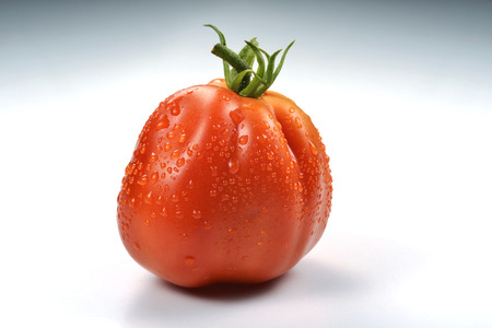 beefsteaks: One Beefsteak Tomato on white board Stock Photo