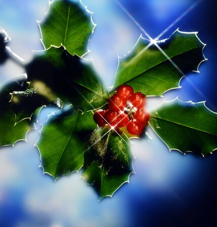 christmas spirit: Holly with Bright Stars effect in Christmas spirit Stock Photo