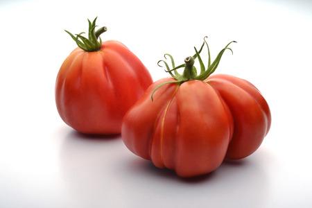 beefsteaks: One Big Beefsteak Tomatoes on white board