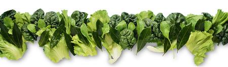 friso: Friso aislada de verde Mix Ensalada horizontal