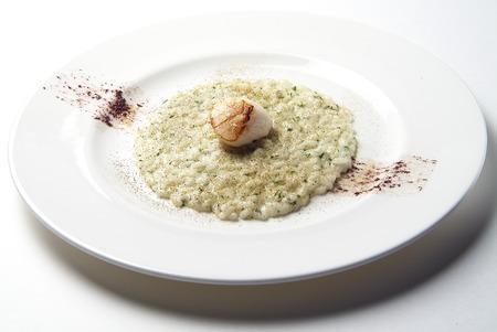 Schotel van Risotto met Sint-jakobsschelpen op witte plaat Stockfoto