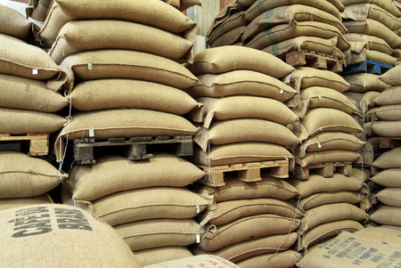 Stock burlap sacks full of coffee in warehouse