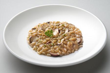 Schotel van risotto met porcini paddestoelen geïsoleerd op grijs vlak
